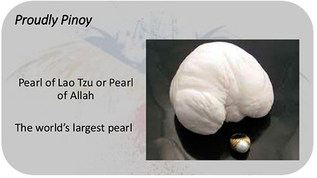 The world's largest known pearl